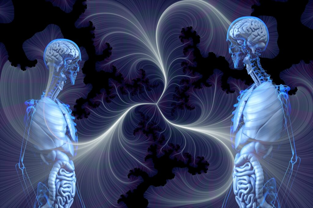 Two bodies showing skeleton and organs and between them design of lines that indicate non physical connections and interactions perhaps on a consciousness level.